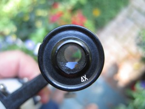 50mm finder